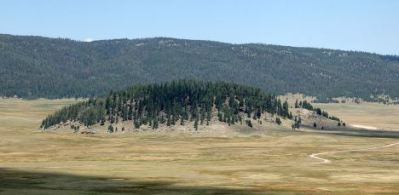 A forested lava dome in the midst of the Valle Grande, the largest meadow in the Valles Caldera National Preserve