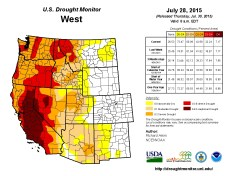 West Drought Monitor July 28, 2015