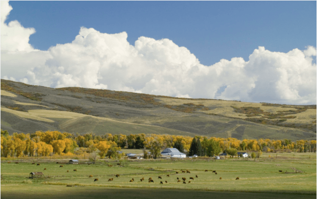 Water rights for the Carpenter Ranch date to 1881, the oldest on the Yampa River. Photo/ Mark Godfrey and The Nature Conservancy