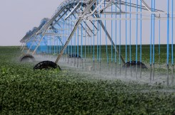 The High Plains Aquifer provides 30 percent of the water used in the nation's irrigated agriculture. The aquifer runs under South Dakota, Wyoming, Nebraska, Colorado, Kansas, Oklahoma, New Mexico and Texas.