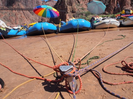 One efficient and effective form of collaboration on the Colorado River, in the Grand Canyon. Photo: Brent Gardner-Smith/Aspen Journalism.