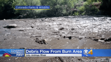 Screen shot of Animas River debris flow July 2018 aftermath of 416 Fire (CBS Denver).
