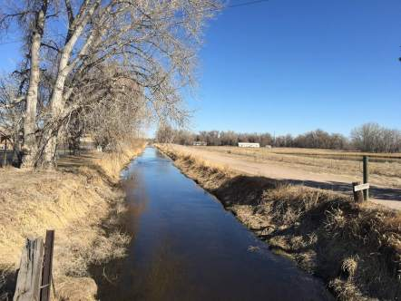 Unlined water ditch in Fort Collins. (Photo by Tina Griego)