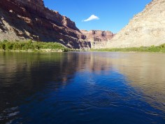Looking upriver at the confluence of the Green and Colorado rivers in late September, one of the driest years on record for the Colorado River system. Water managers in both the upper and lower basins are working to get more water to this point in order to bolster the low level of Lake Powell, which is not far downstream.