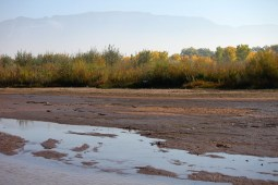 The Rio Grande near Albuquerque in 2012. Photo credit: City of Albuquerque CC by 2.0 via The New Mexico Political Report