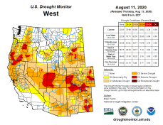 West Drought Monitor August 11, 2020.