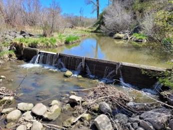 Stafford Ditch - Check Dam May 2021. Photo credit: Scott Hummer