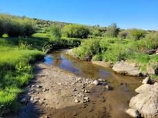 Hunt Creek below Barr Ditch June 14, 2021. Photo credit: Scott Hummer