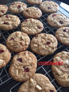 cranberrycookiesgfnamed1