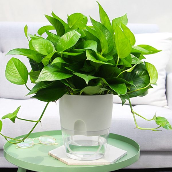 Watering Planter Handmade 2 Layer Self Watering Plant Flower Pot With Water Container Round Flowerpot Home