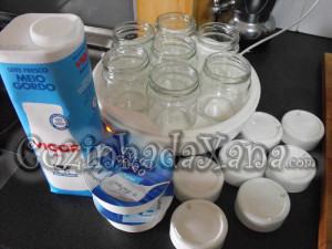 iogurtes caseiros compensa ou não