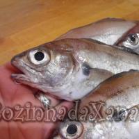 Os peixes - A faneca (como escolher, arranjar e fazer faneca frita)