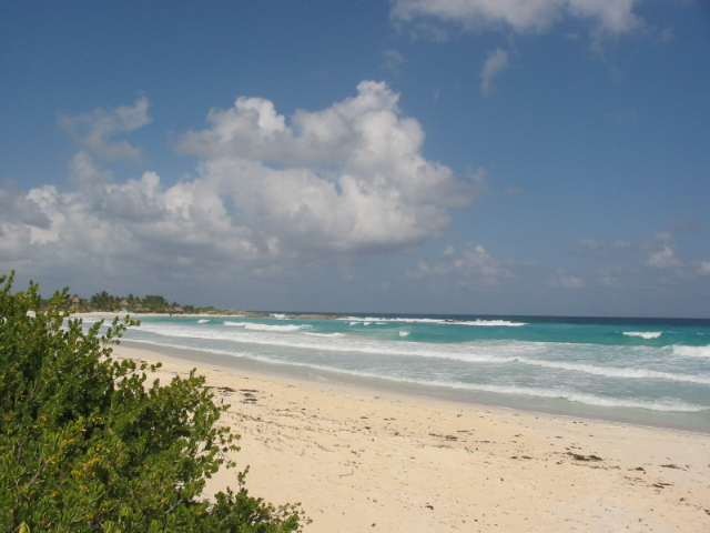 Cozumel My Cozumel beach