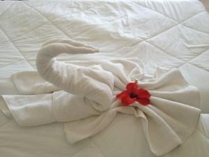 Cozumel My Cozumel hotel room