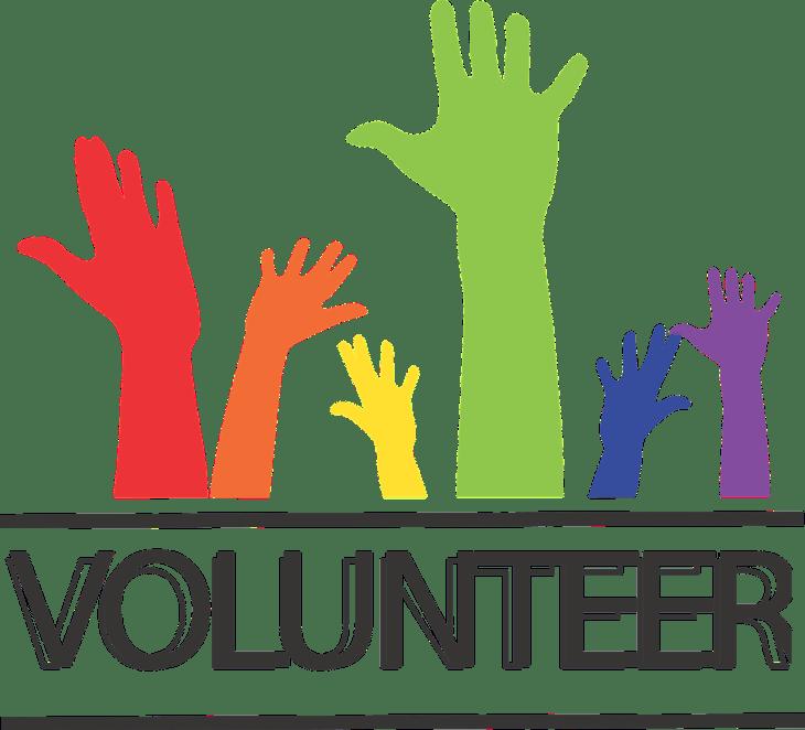 Cozumel volunteering image