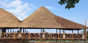 Cozumel featured restaurants- Hemingway