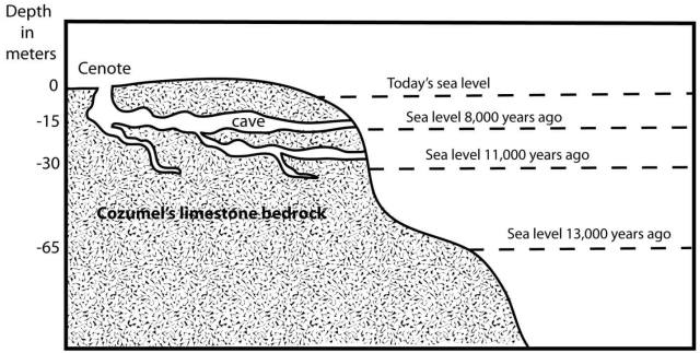 Cozumel Formation Sea Levels