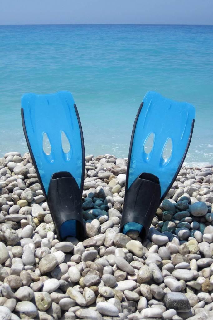 Cozumel My Cozumel snorkeling from shore