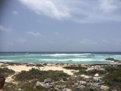 Endless coastine views