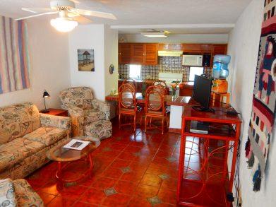 1-bedroom unit living area.