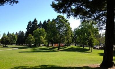 Beautiful Red Morton Park