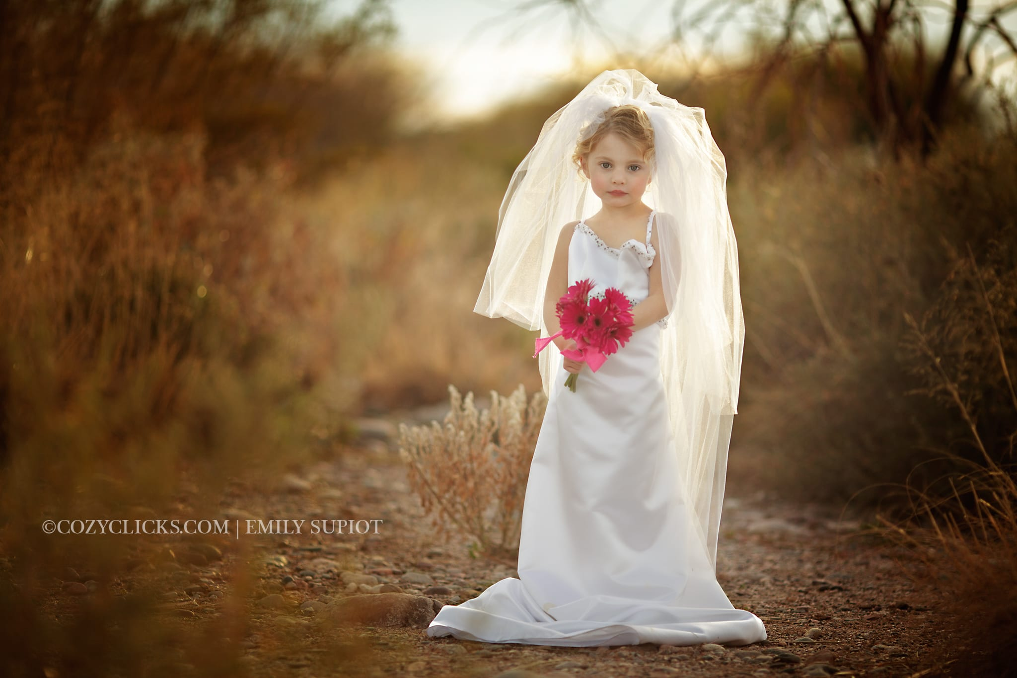 "Phoenix Children's Photographer- ""Wedding Dress Up Preview"""
