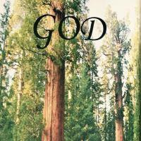 God trees