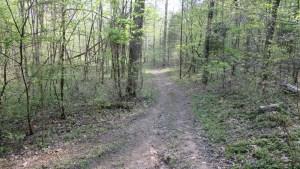 Adams County Cozy Hideaway ATV Trail