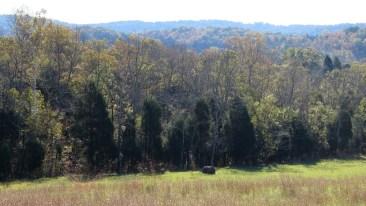 Adams County Cozy Hideaway View