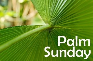 Palm Suinday