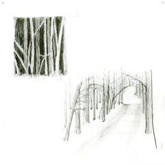 curley_farm trees