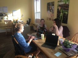 Working on the freshman presentation in the Cornucopia office