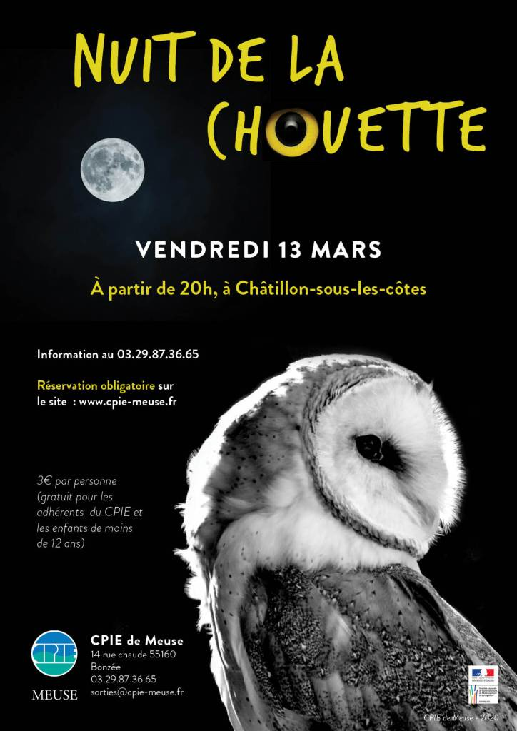 Nuit_chouette