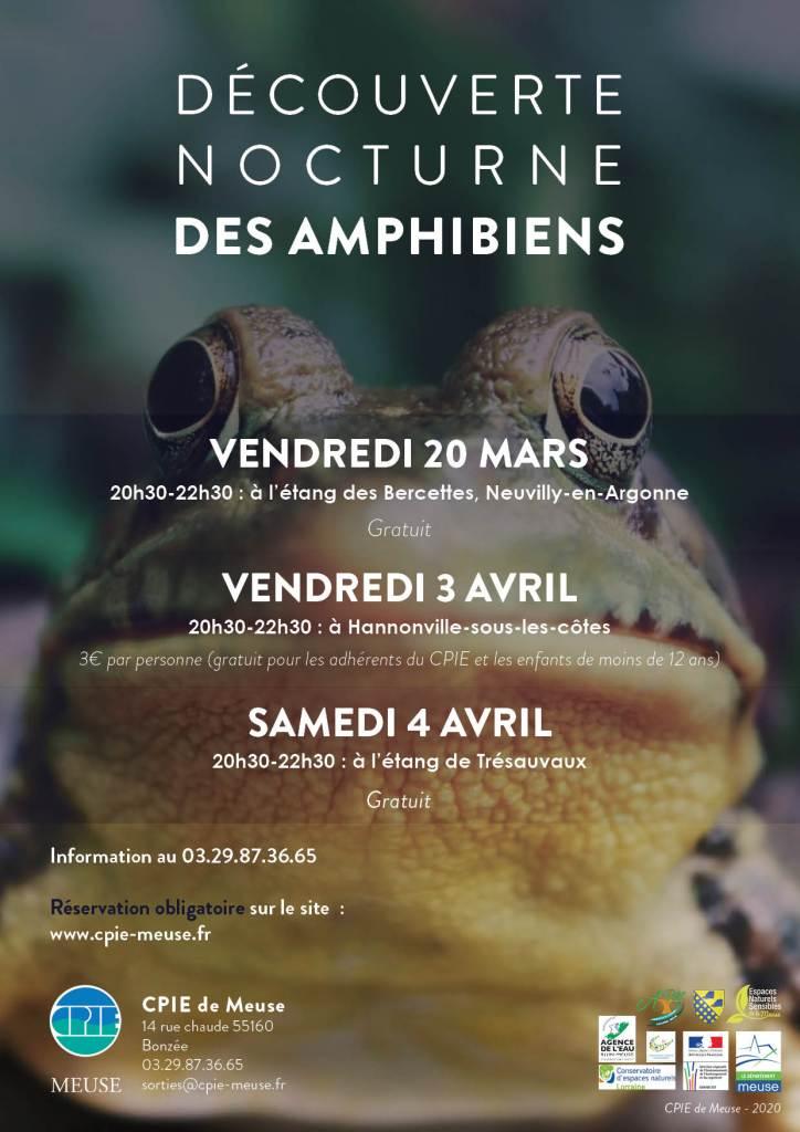 decouverte_amphibiens