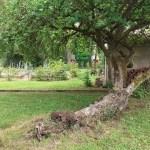 NADINE PUGET-Biodiversité (2)