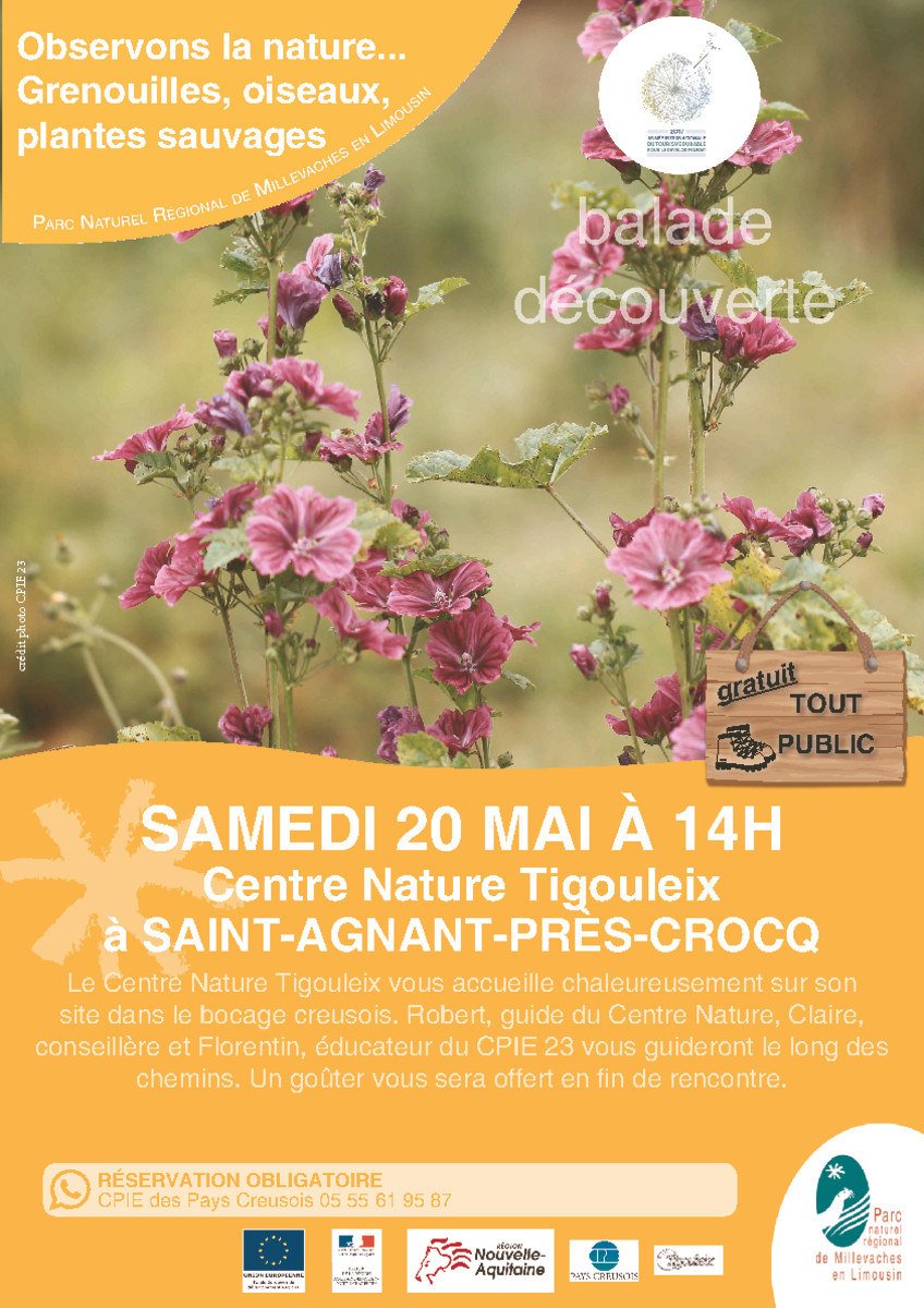 thumbnail of 2017_05_20_affiche_THEMA_observation nature