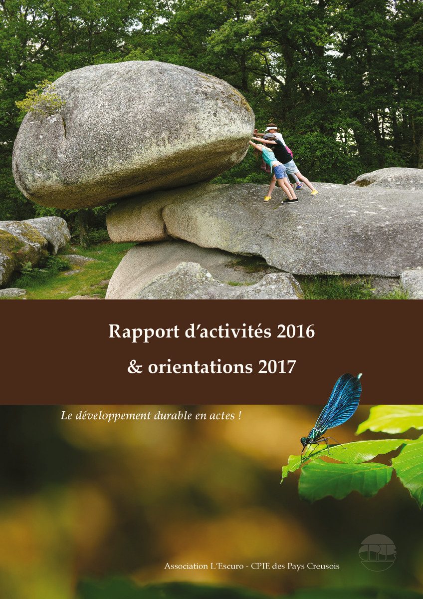 thumbnail of Rapport_activite_2016