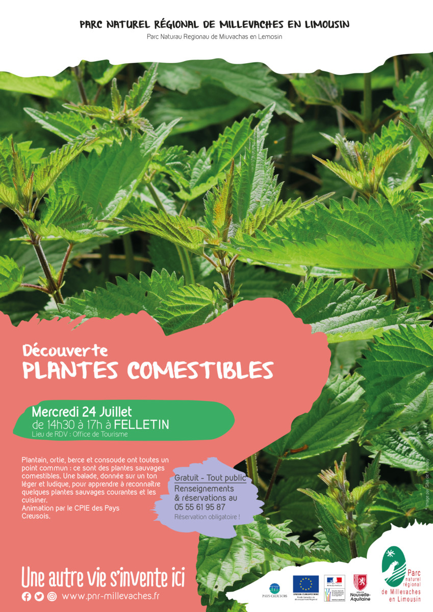 thumbnail of 2020_07_24_plantes comestibles