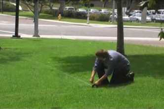 Wages stagnant, costs up: Landscape Worker