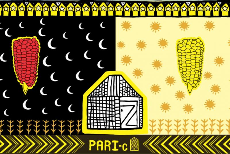 Pari-C