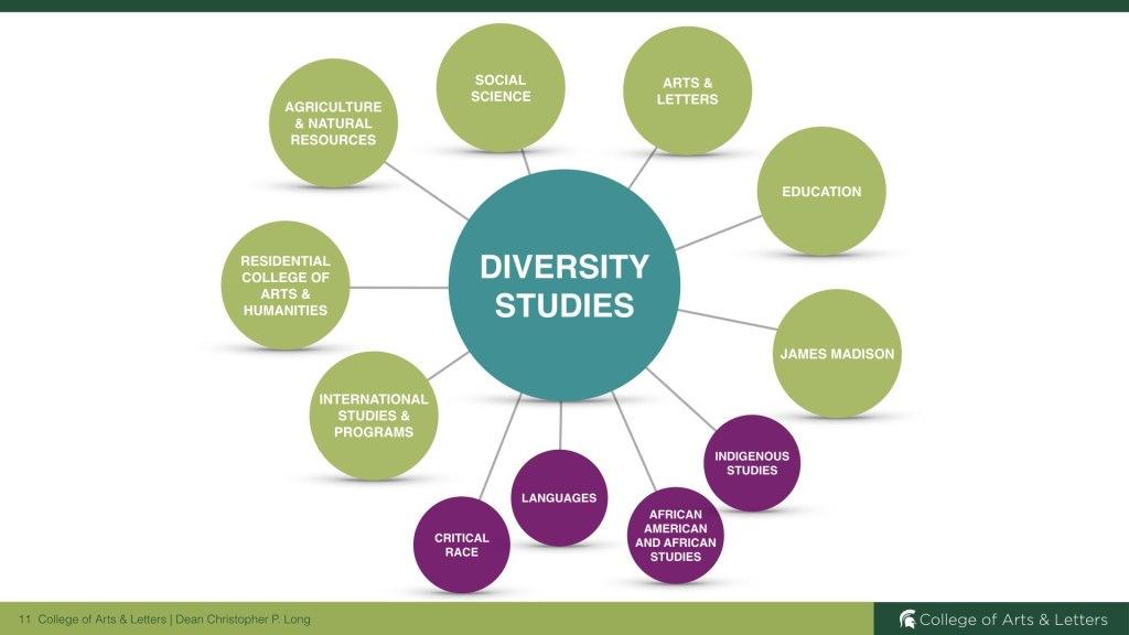 Strength of Diversity Studies