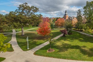 Header of MSU campus in the fall.