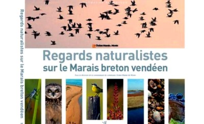 Regards naturalistes sur le Marais breton vendéen