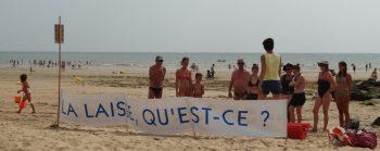 laisse-de-mer-07-2015
