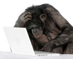 Серьёзное отношение к домашним заданиям позволяет примату достичь выдающихся результатов