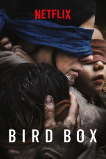 Bird Box (2018) - Susanne Bier | Synopsis, Characteristics, Moods ...