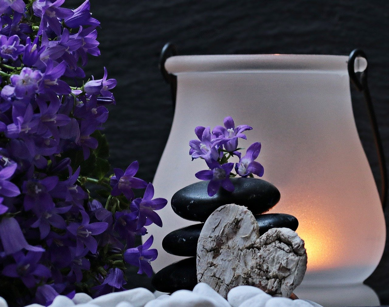 mindfulness - daily recovery support calls - cptsd foundation