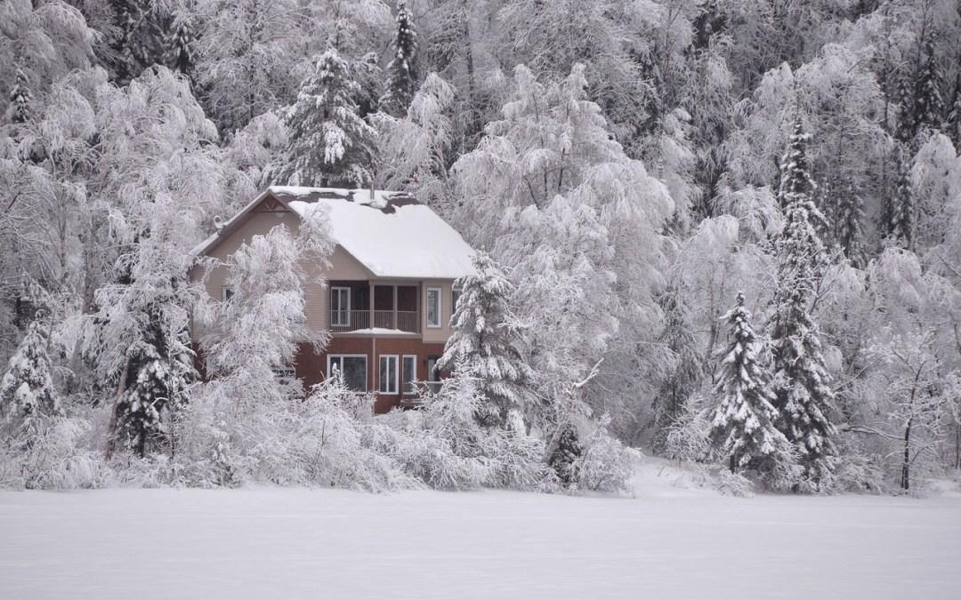 The Dissociation House