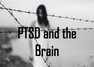 Post-Traumatic Stress Disorder and the Brain