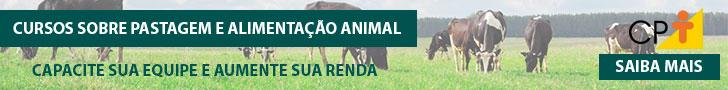 Área Pastagens e Alimentação Animal 01